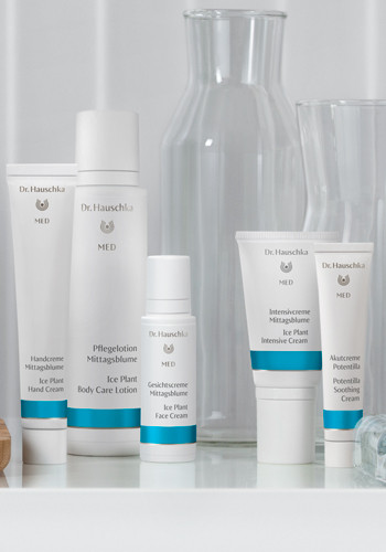 The Natural Way To Treat Atopic Dermatitis Dr Hauschka